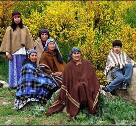 Resistencia en territorio mapuche