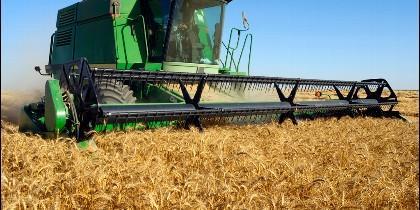 Convocadas las nuevas subvenciones para la agricultura y la ganadería