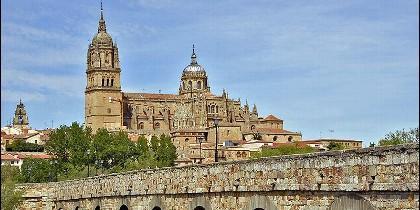 Salamanca celebrará un nuevo congreso de Español