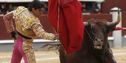 El matador Víctor Barrio.