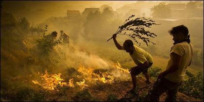 Incendio forestal en Galicia.