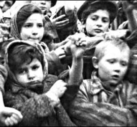 Niños judíos marcados con un número tatuado en Auschwitz-Birkenau; Bergen-Belsen, Mauthausey otros campos de exterminio nazis.