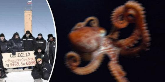 Los científicos rusos y el calamar
