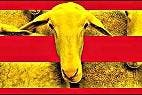 Independentismo, educacion y sectarismo en Cataluña.