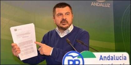 El vicesecretario de Coordinación Política del PP en Andalucía, Toni Martín Iglesias.