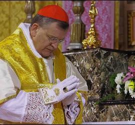 La opulencia del cardenal Burke