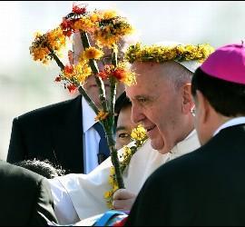Francisco y paz