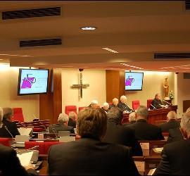 Los obispos, en la Plenaria