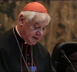 Ex-Prefecto de Doctrina de la Fe, el cardenal Müller
