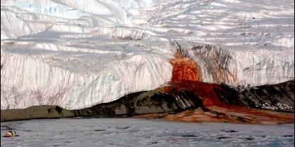 Cascadas de Sangre de la Antártida