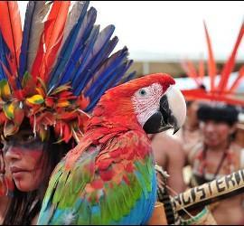 Indígenas de Roraima, Brasil