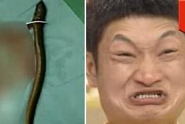 Un chino y una anguila