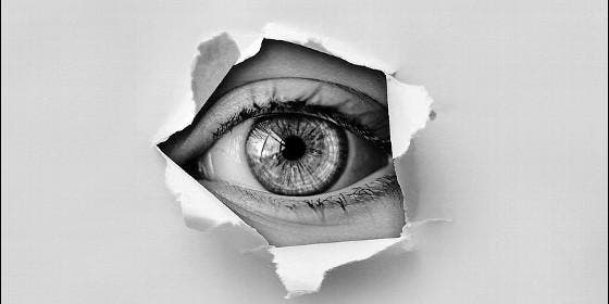 CNI, servivio secreo, espía, inteligencia, información.