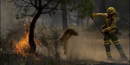 El incendio de Doñana.