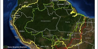 La Amazonía está amenazada por los cultivos, incluida la caña de azucar.