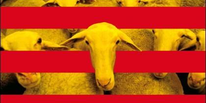 Cataluña y el adoctrinamiento independentista en las escuelas catalanas.