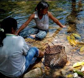 Los Barí, pueblo indígena de Colombia y Venezuela