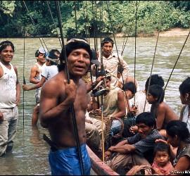 Indígenas Barí