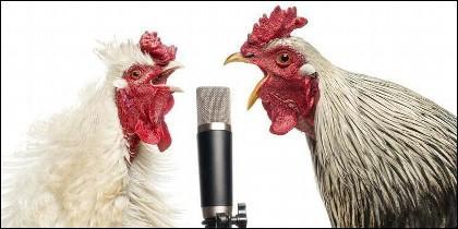 Canciones que te pueden poner la piel de gallina.