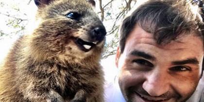 Federer con un quokka
