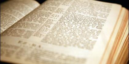 Verbo Divino y la Palabra que nos une