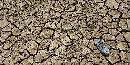 El Vaticano reclama acciones concretas para garantizar el derecho al agua potable