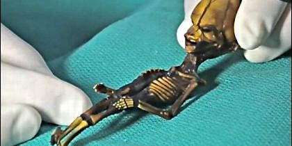 El esqueleto de Atacama, apodado Ata, son los restos momificados de una criatura humanoide de aproximadamente 15 centímetros encontrada en el desierto de Atacama, Chile.