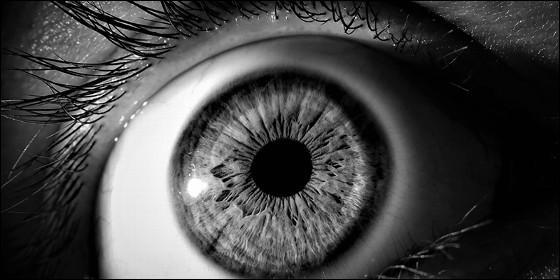Células madre contra la dejeneración ocular