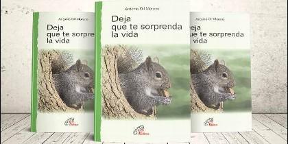 'Deja que te sorprenda la vida', nuevo libro de Antonio Gil Moreno en Paulinas