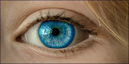 La longevidad de las células madre aplicada a la vista