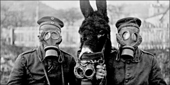 Soldados de la I Guerra Mundial con su mula y con máscaras antigás.