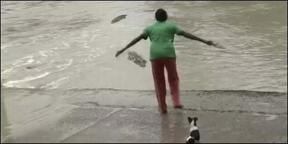La mujer hace frente al cocodrilo con una zapatilla.