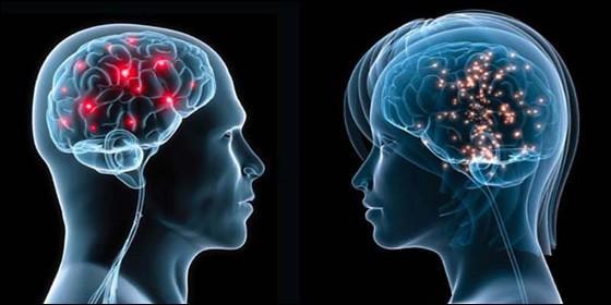 Hombre, mujer y cerebro.