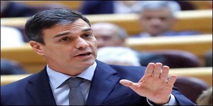 El presidente del Gobierno, el socialista Pedro Sánchez, en el Senado