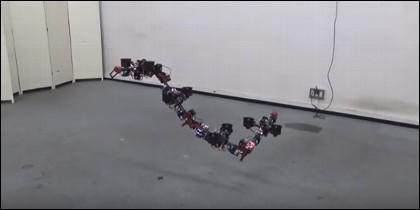 Robot dragón