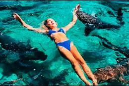 Katerina Zarutski siendo mordida por el tiburón