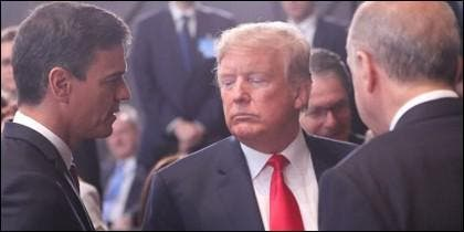 Trump y Sánchez