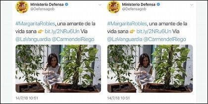 Tuit Margarita Robles