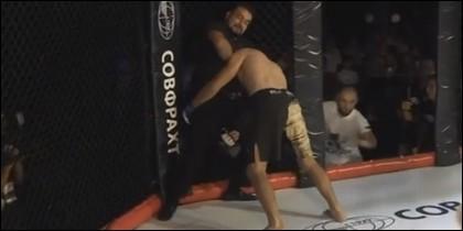 Árbitro de MMA
