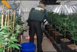 Un agente de la Guardia Civil en un vivero de marihuana