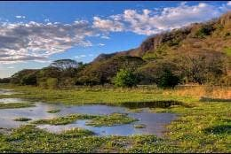 Laguna Palo verde