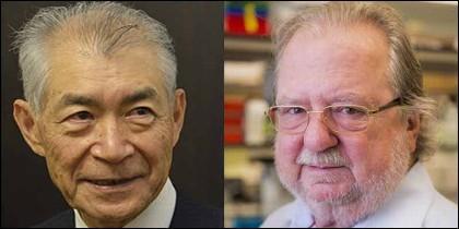Nobel en Medicina: el japonés Tasuku Honjo y el estadounidense James P. Allison.