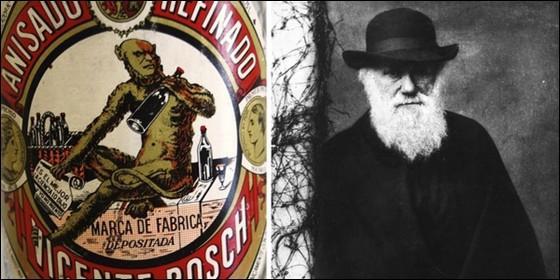 La etiqueta de 'Anís del Mono' y el el biólogo inglés Charles Darwin.
