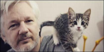 Julian Assange, fundador de Wikileaks, y su gato.