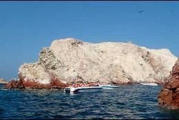 Islas Ballestas, Paracas