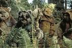 Ewok de Star Wars