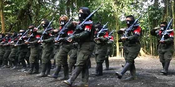 ELN opera en doce estados de Venezuela — Insight Crime