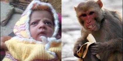 El pequeño Arush y un mono de la zona
