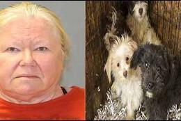 Donna Roberts, la mujer que tenía 44 cadáveres de perros en su nevera.