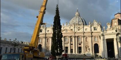 árbol de Navidad del Vaticano